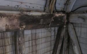 Holzschaden durch permanennten Wassereinbruch am Dach.